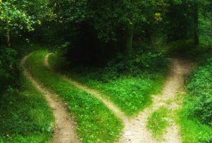 two-pathways